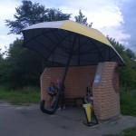 Россия. Вязьма. Самая красивая автобусная остановка в России