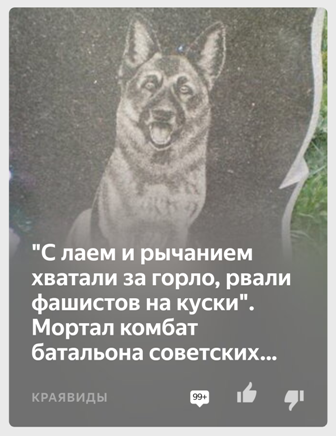 8Screenshot_2020-01-01-14-03-17-842_com.yandex.zen